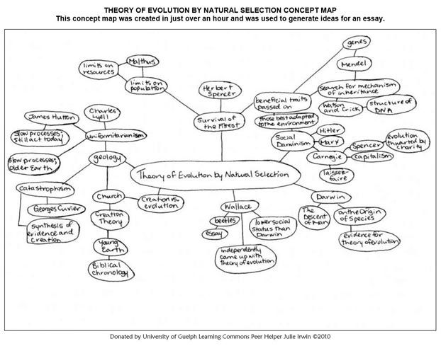 natural selection concept map science stuff natural selection concept map