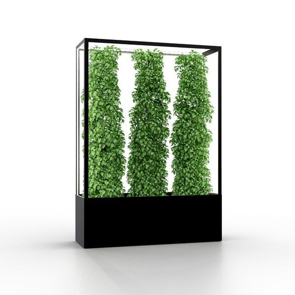 Cube Planted Lamp For Growing Indoors Offices Or Gastro