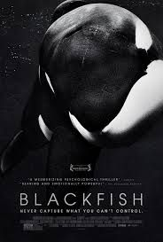 Blackfish Learning Guide (lesson plan/activity) (via Teach with ...