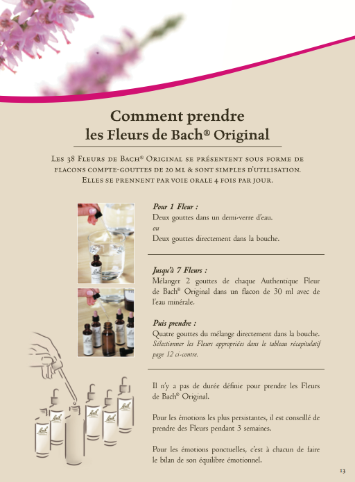 Comment Prendre Les Fleurs De Bach Homeopathie Aromatherapie