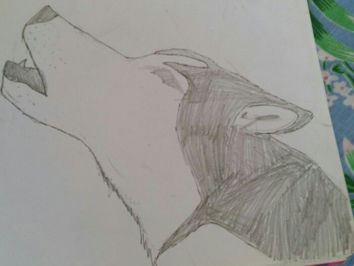 Wolf howling.#30doodles  Repin with credit. Drawn by Blaze Runner ( Blazeclaw, Alphaheart ).