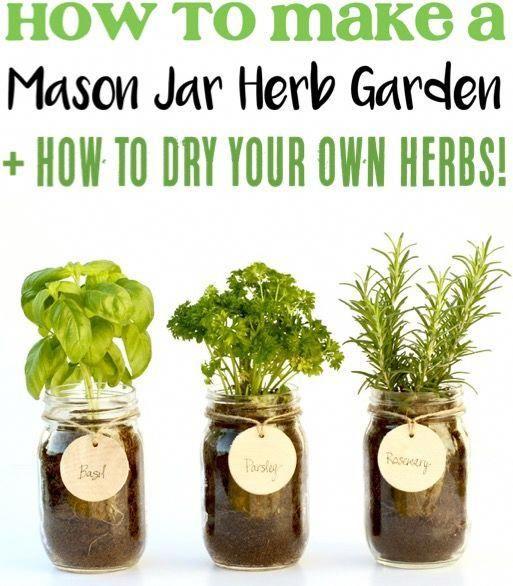 indoor herb garden diy ideas for beginners these easy on indoor herb garden diy wall mason jars id=78027