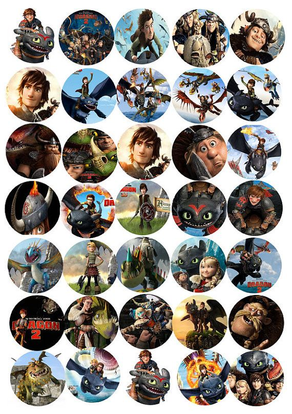 30x How to train your dragon cupcake toppers edible wafer
