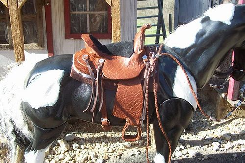 saddle set 40 d   Flickr - Photo Sharing!