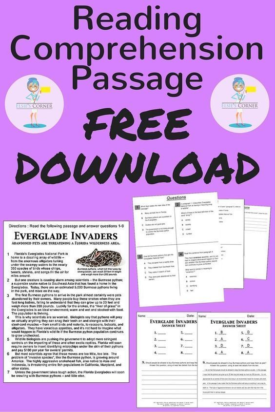 Try a passage on us! We are so confident in our Reading Comprehension Passages, we want to give you one for FREE! Whether you are preparing for a standardized test or simply want to give your kiddos an afternoon assessment... You'll be happy you used Elsi
