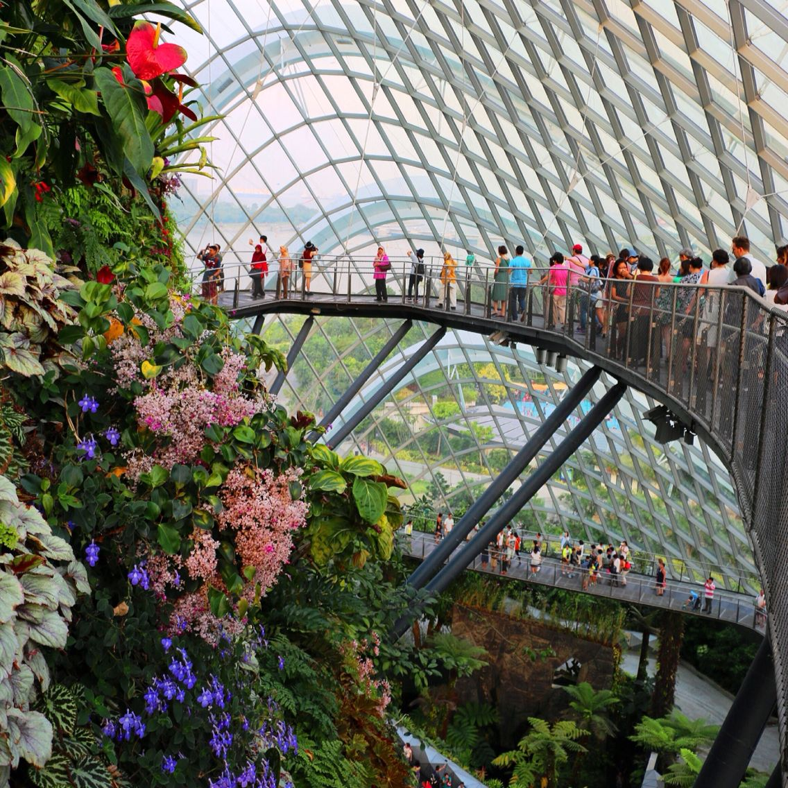 Cloud Forest, Garden By The Bay, Singapore Singapore