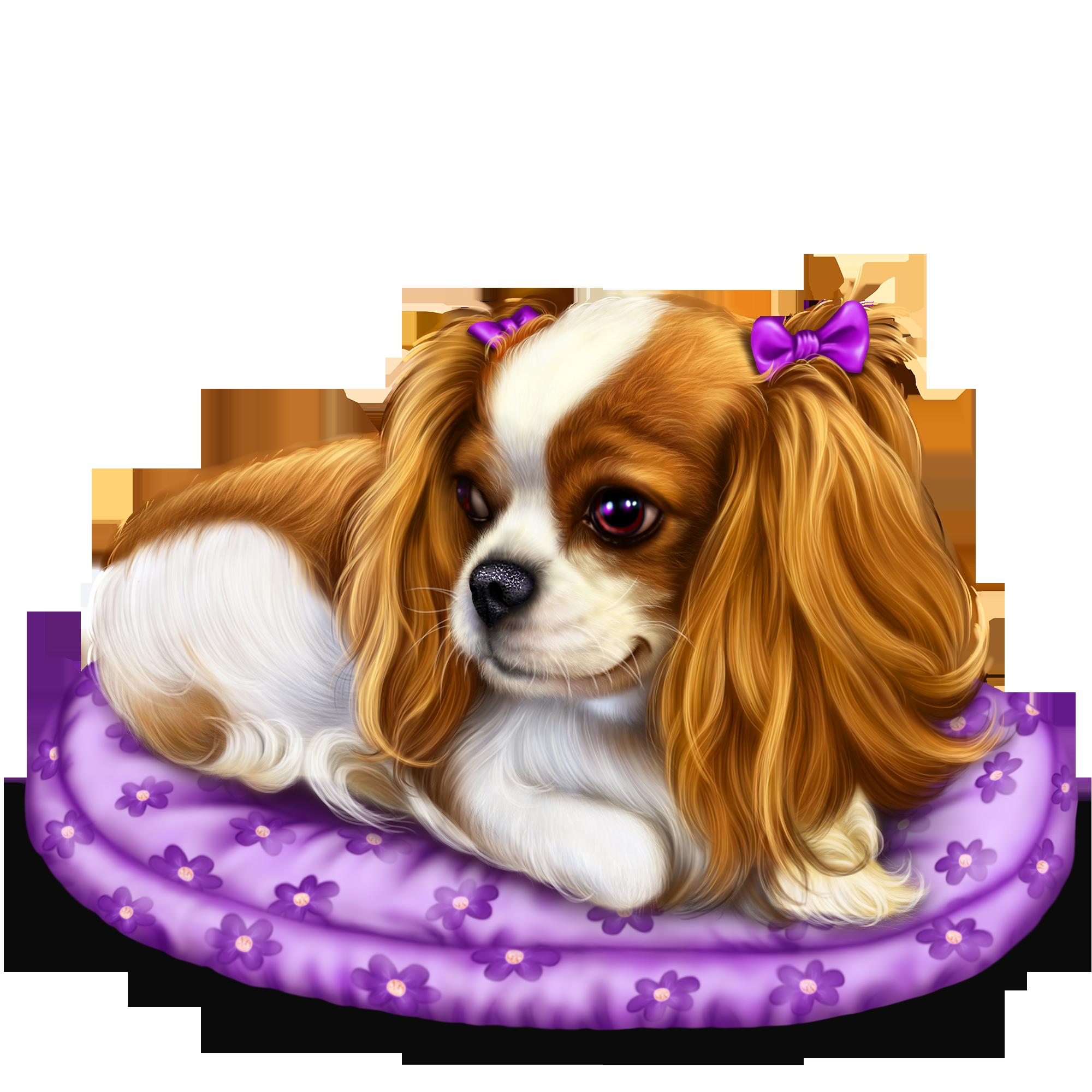 Pin By Corina Frezja On Pieski Dog Illustration Cavalier Dog Sweet Animals