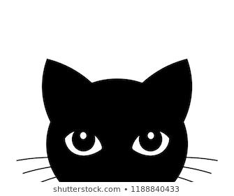 Cat Attack Cute Black Cat Face Vector Illustration Cat Face Drawing Cute Black Cats Cat Vector