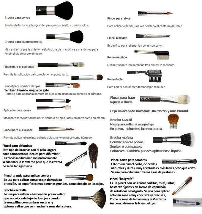 Uso de brochas para maquillaje Maquillaje Pinterest Brochas - Tipos De Cejas