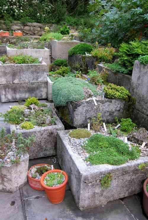 Jardin de rocaille et jardin alpin en 50 idées inspirantes