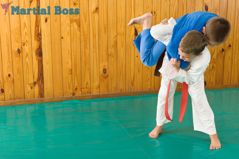 Accept My Challenge Jiu Jitsu Belts Muay Thai Shin Guards Brazilian Jiu Jitsu