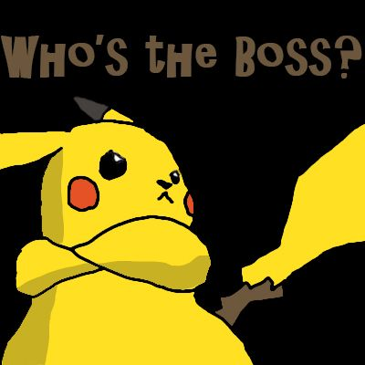 whos the boss!!