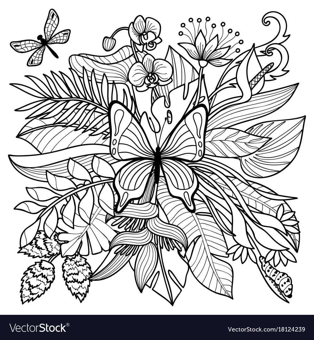Pin By Debby Mackay On Coloring Butterfly Insect Coloring Pages Coloring Pages Flower Coloring Pages [ 1080 x 1000 Pixel ]