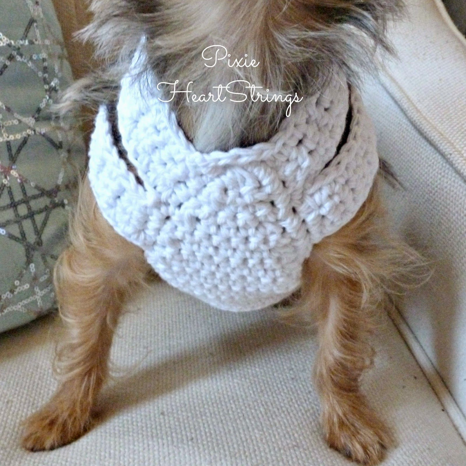 A Crocheted Dog Harness for Your Tiny Dog ~ FREE Pattern ...