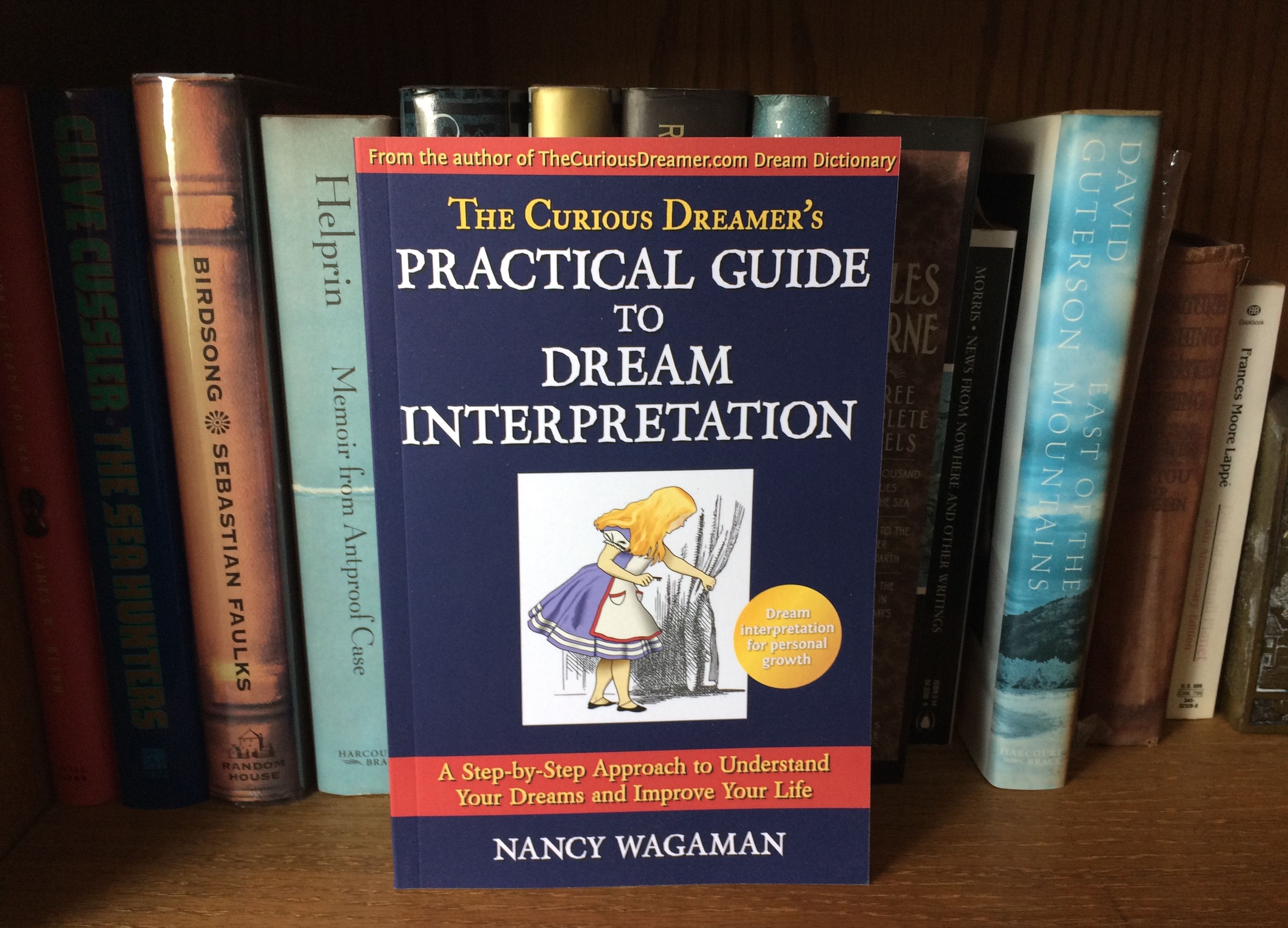 Dream Interpretation Shelving, what is dreaming of Shelving in a dream to see 48