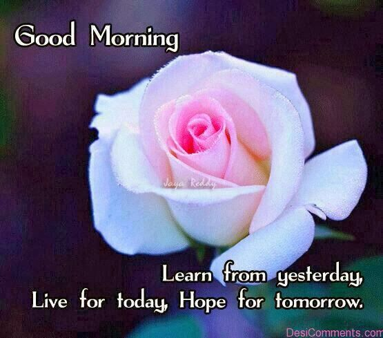 Good morning mms pics