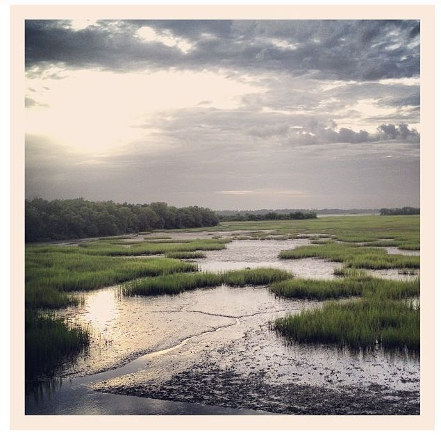 Lowcountry Marsh South Carolina Landscape Art