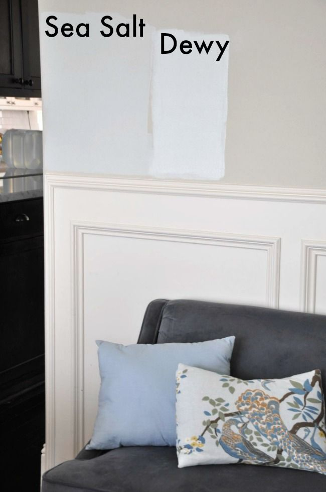 Choosing Paint For The Dining Room Sherwin Williams Sea Salt Sherwin Williams Sea Salt Sea