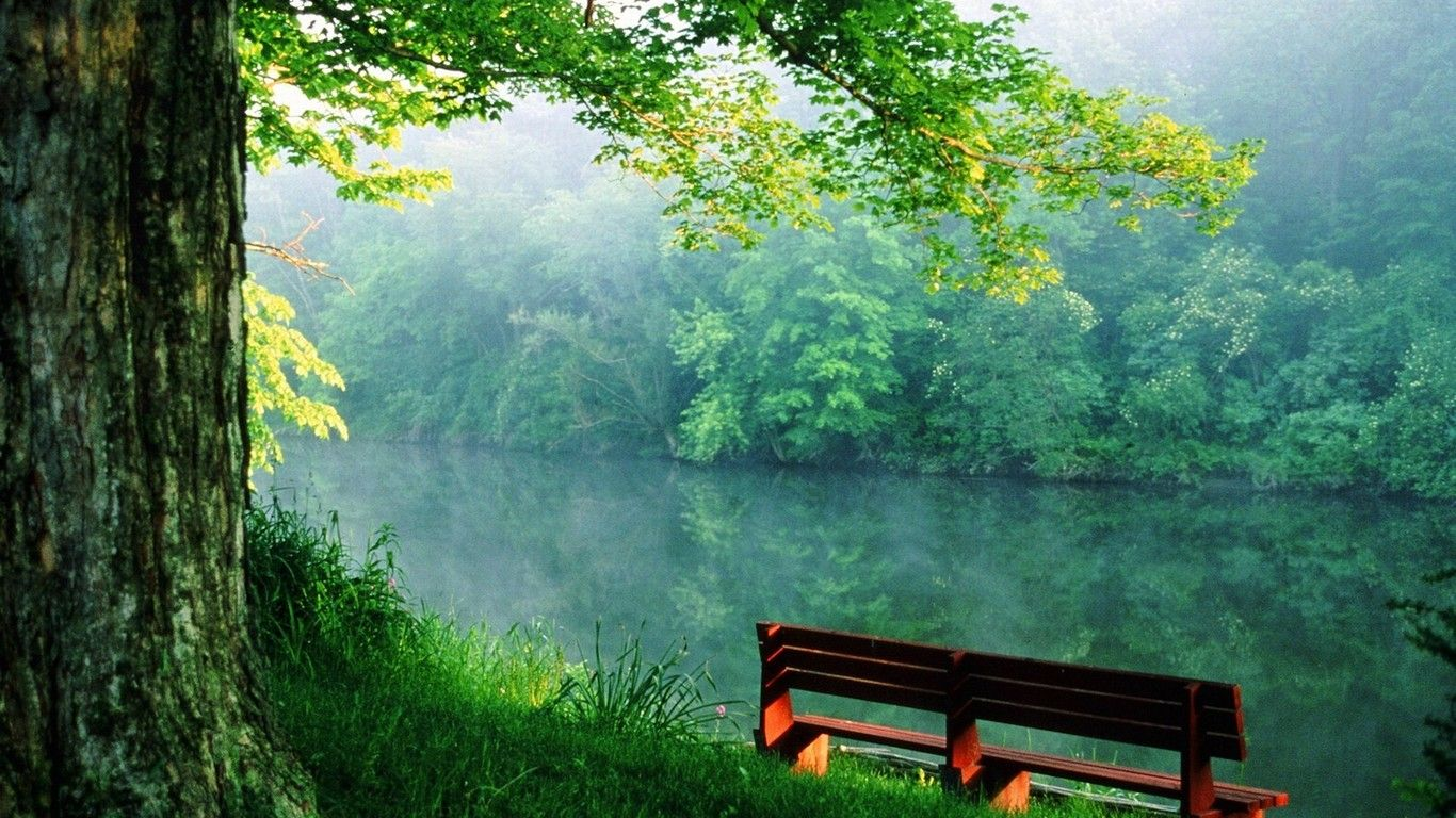 3d nature wallpaper 1366x768 hd 1080p 12 zaubersch n pinterest 3d nature wallpaper and - 1366x768 is 720p or 1080p ...