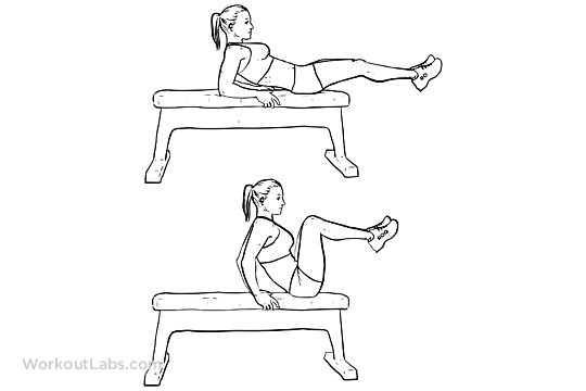 Seated Bench Leg Pull-Ins / Flat Bench Knee-ups | WorkoutLabs ...