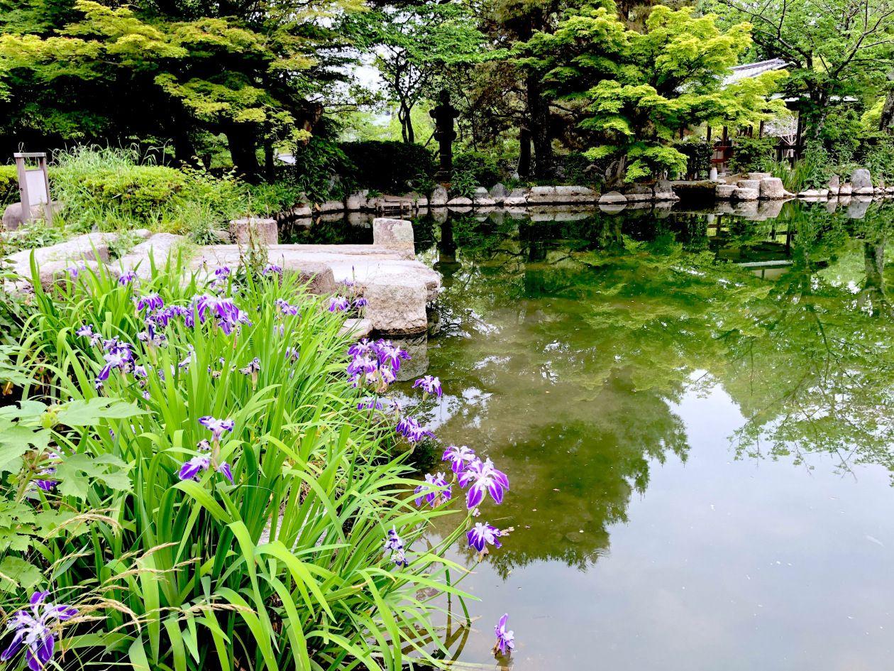 Beautiful Kyoto