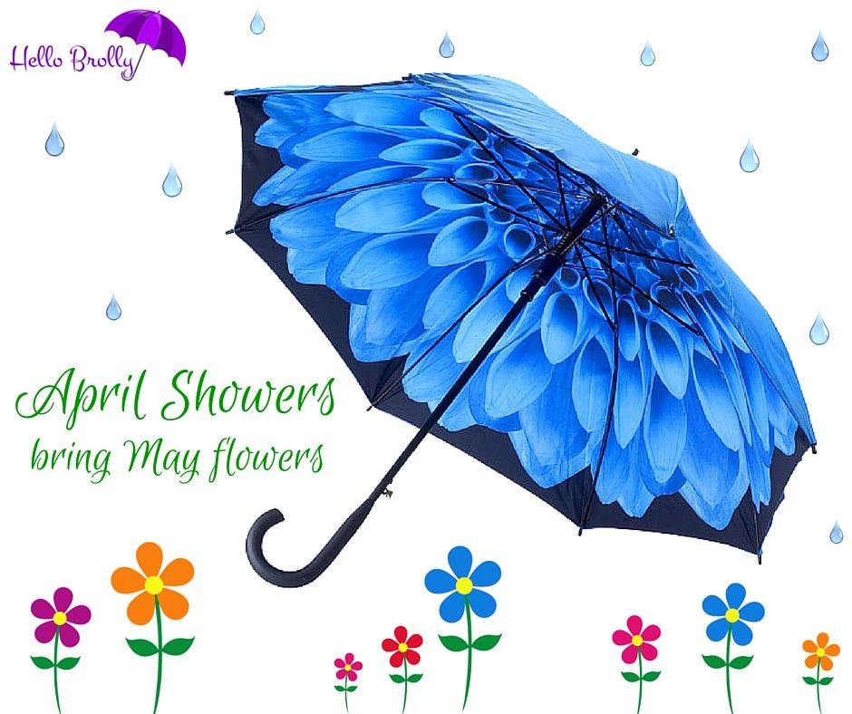 The beautiful double canopy Blue Dahlia umbrella from Hello Brolly.
