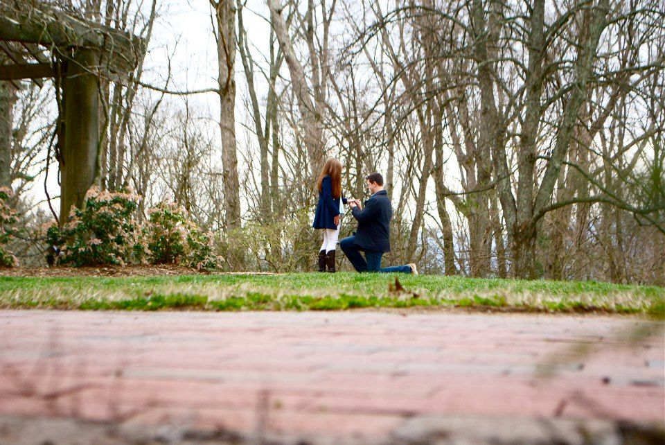 Pictures During The Proposal? Check. <3
