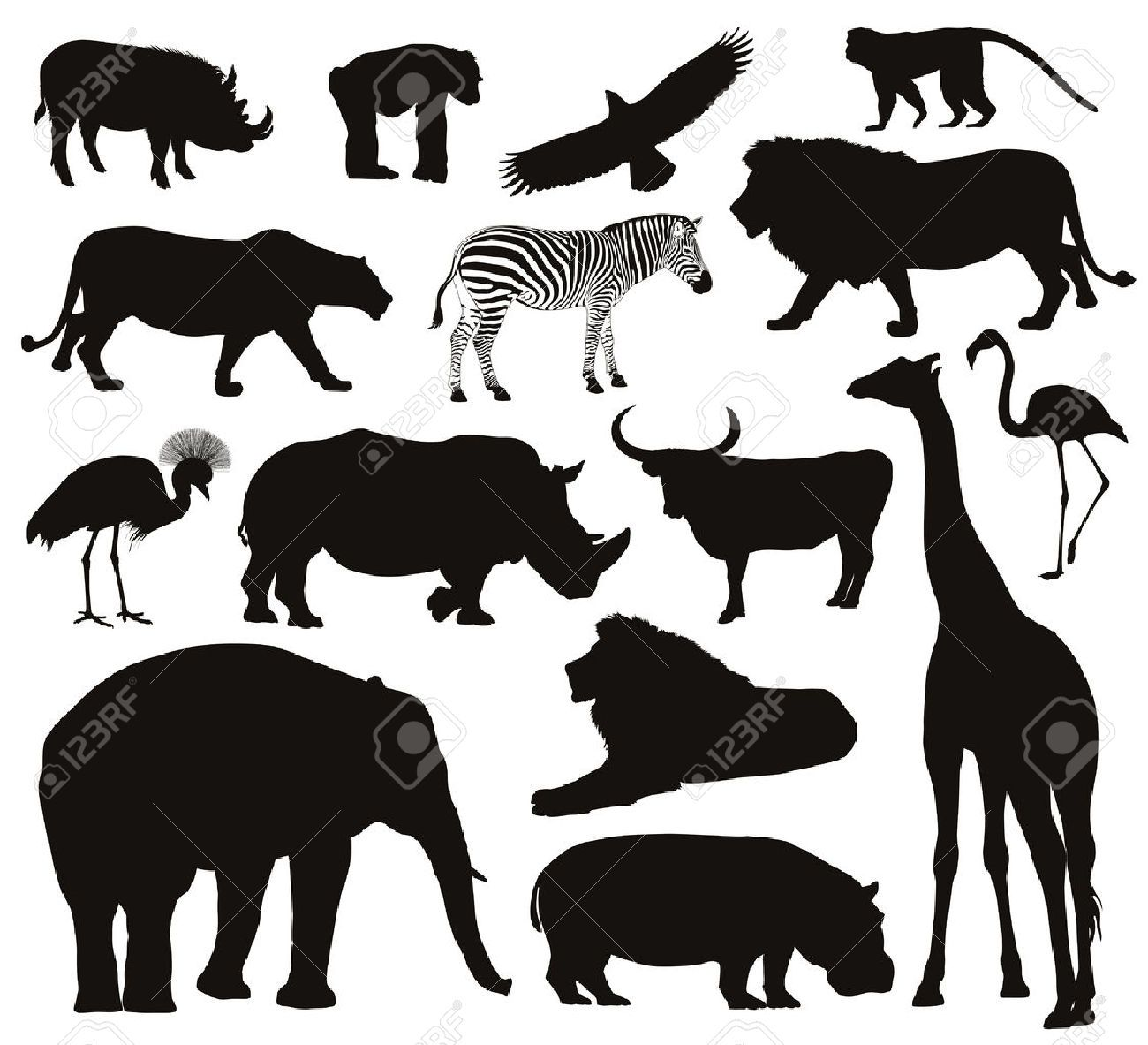 Stock Photo Animaux africains, Silhouette animaux et Animaux