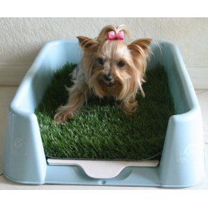 The Rascal Dog Litter Box Potty Training Puppy Dogs