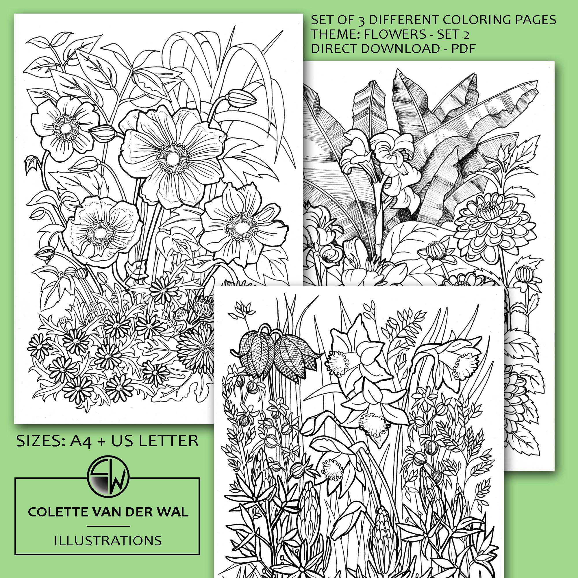 Bloemen Kleurplaten Set 2 Set Van 3 Verschillende Etsy Bloemen Kleurplaten Kleurplaten Handgetekend