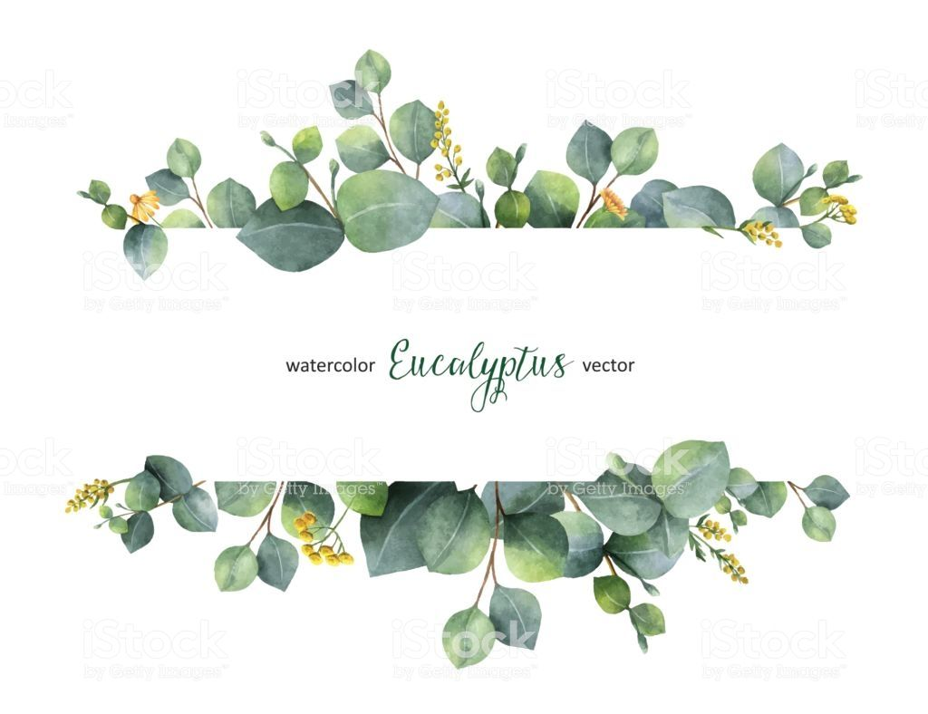 Watercolor Vector Hand Painted Green Floral Banner With Silver