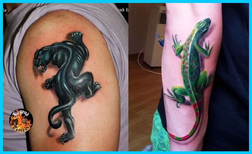 Best Tattoo In The World: The Best Tattoos In The World, The World's Best Tattoos
