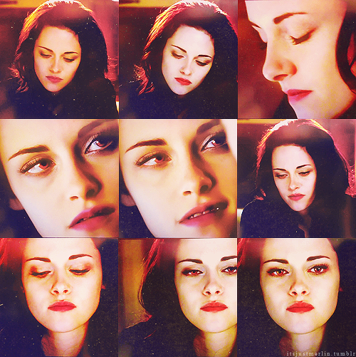 I Have Loved You For A Thousand Years Twilight Saga Twilight Fans Twilight Pictures