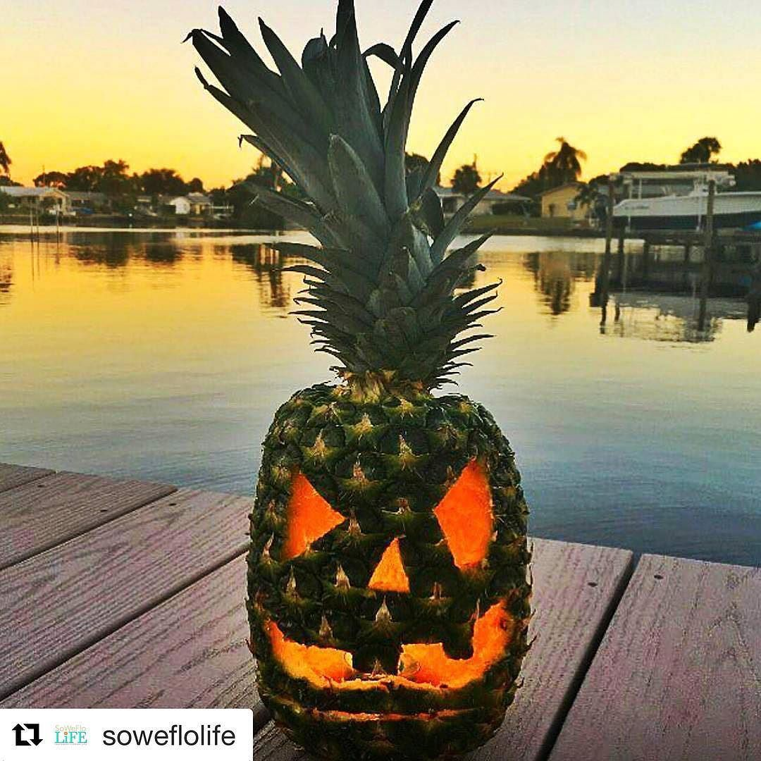 Happy Halloween Everyone Repost Soweflolife Halloween