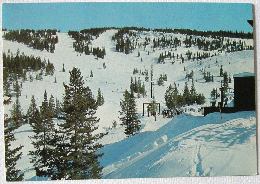 Postcard Mid Vail Area 4 Chairlift Swingsville Ski Run