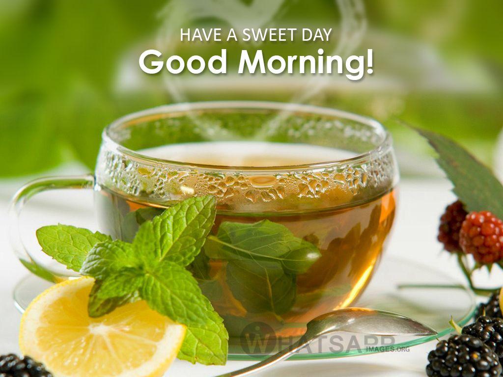 Good Morning Green Tea Images Green Tea Benefits Peppermint Tea Benefits Peppermint Tea