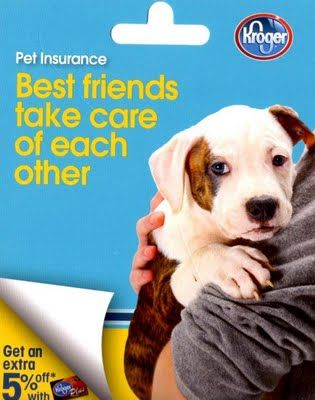 Dog In Ad For 21st Century Pet Insurance Pet Care Logo Elderly