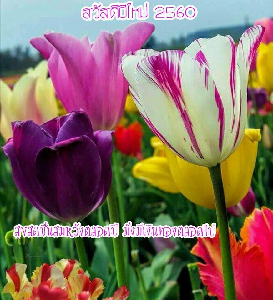 Cool Wallpaper Name Avinash - 90f51b1af24b202661d57c0877d7c959  You Should Have_94241.jpg