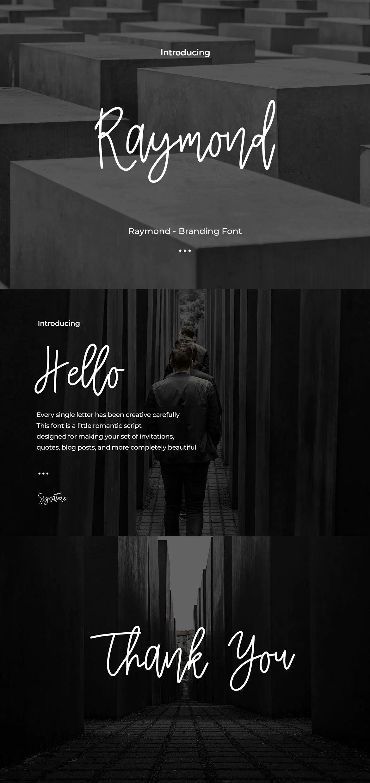 Raymond Branding Font in 2020 Brand fonts, Branding