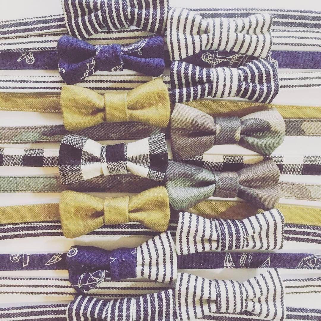 24 個讚,5 則留言 - Instagram 上的 kakka(@kakka.p.mita):「 お友達がやっているブランド 『43服』の猫ちゃん用蝶ネクタイ首輪🎀😺 あまりにツボだったので、ピピもついに首輪デビューさせることにしました٩( ᐛ )و 届くの楽しみ(*´꒳`*)😽♪… 」