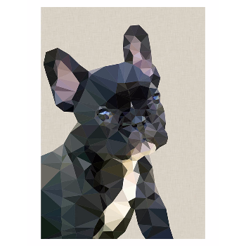 Studio Cockatoo Frenchie Bulldog A2 Framed Print: Are they the cutest dog or what? French Bulldog print by Studio Cockatoo.