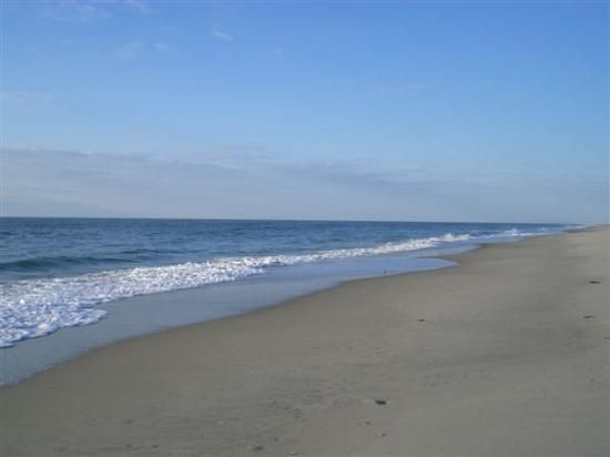 Chincoteague Island Would Love To See The Wild Horses There