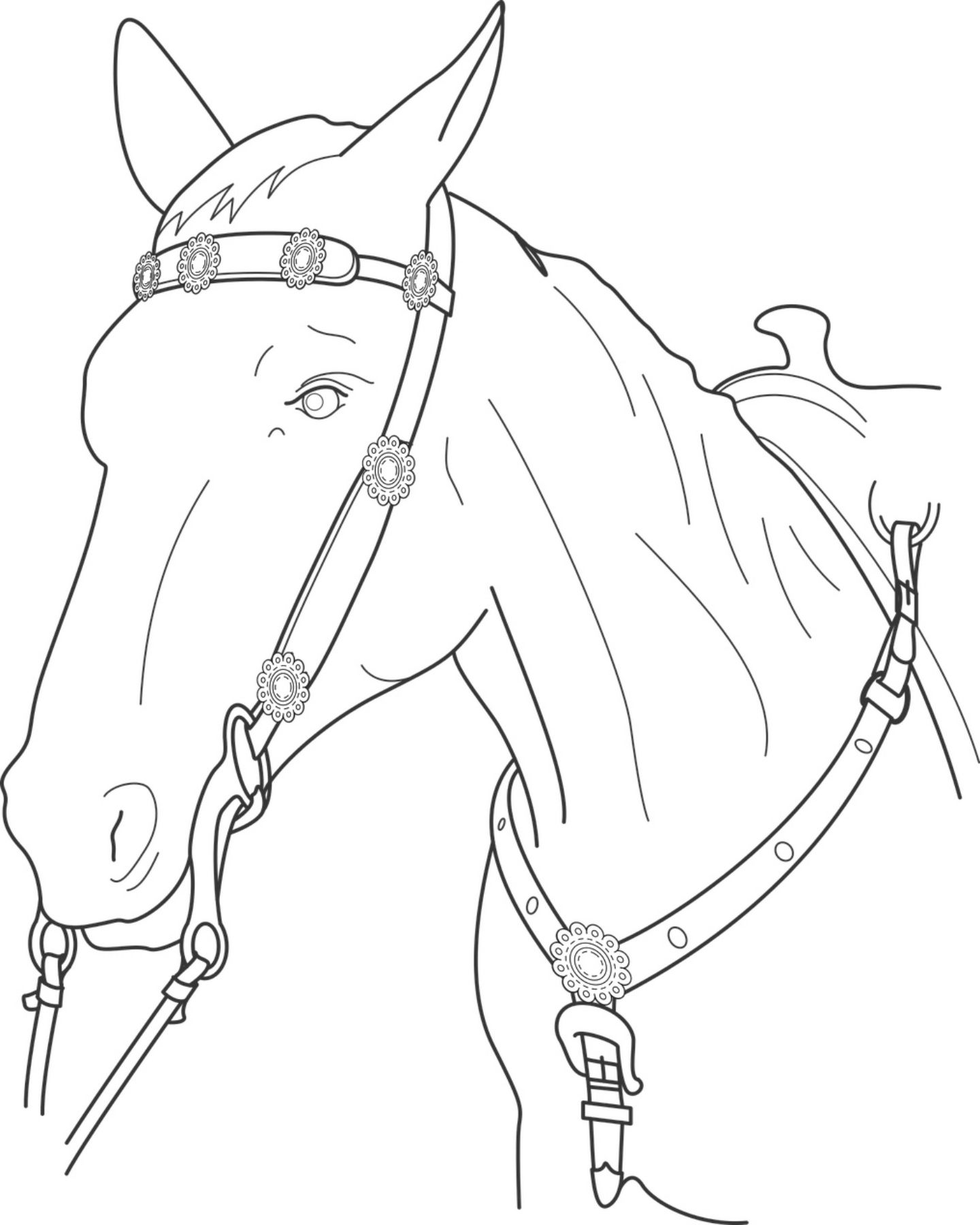 Free Printable Horse Coloring Page | ~*Free Printables*~ | Pinterest ...