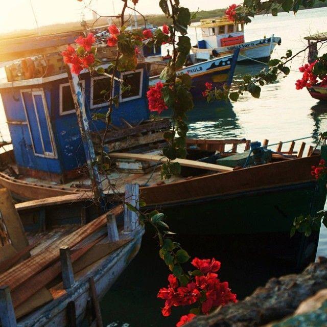 Rio Potengi - Barcos - Flores