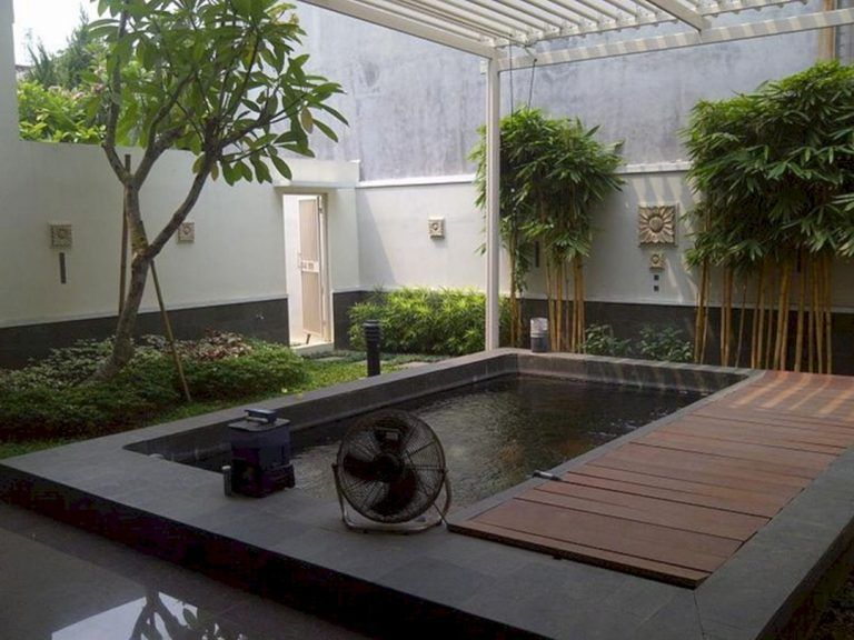 Indoor Fish Pond Design #zengardens