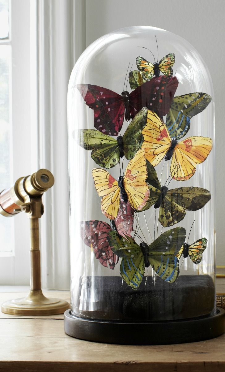 34 decorating butterfly ideas