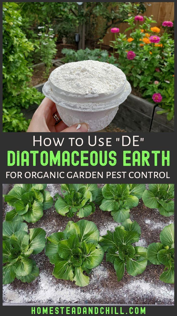 Pin On Organic Garden Pest Disease Control