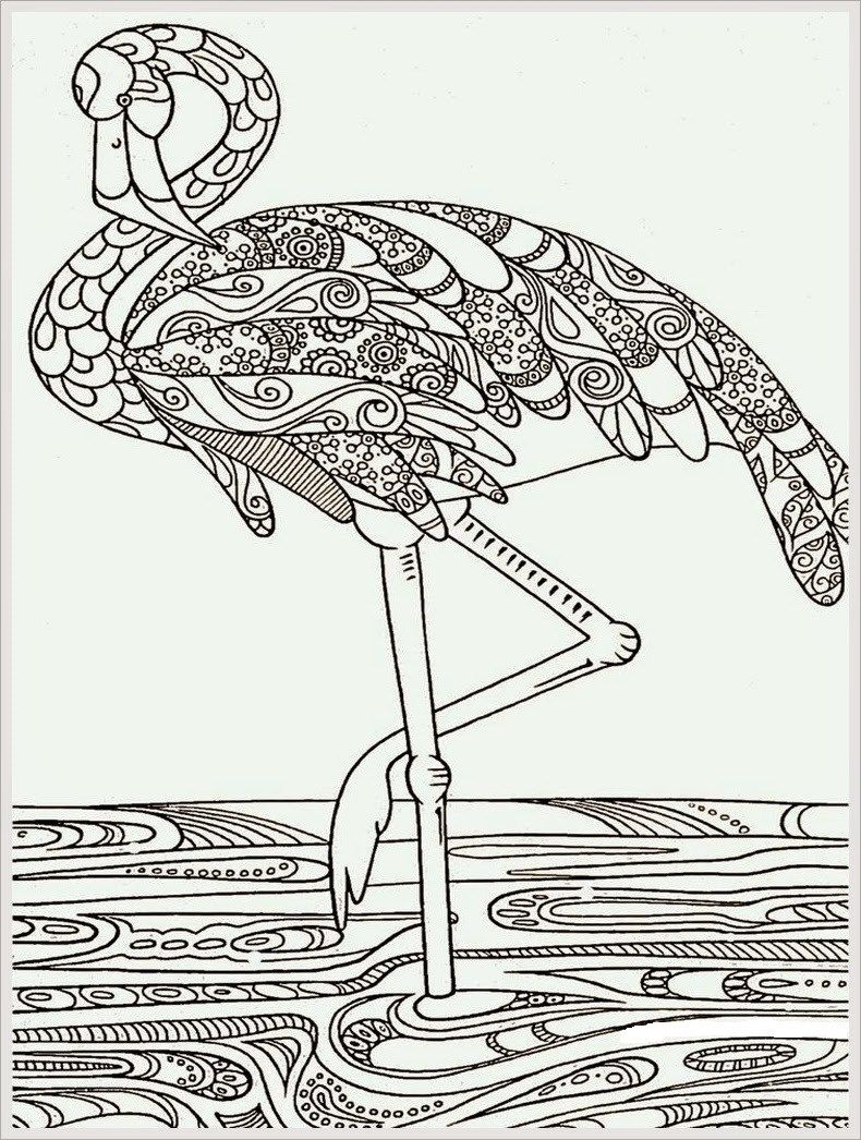 Adult Coloring Pages Flamingo