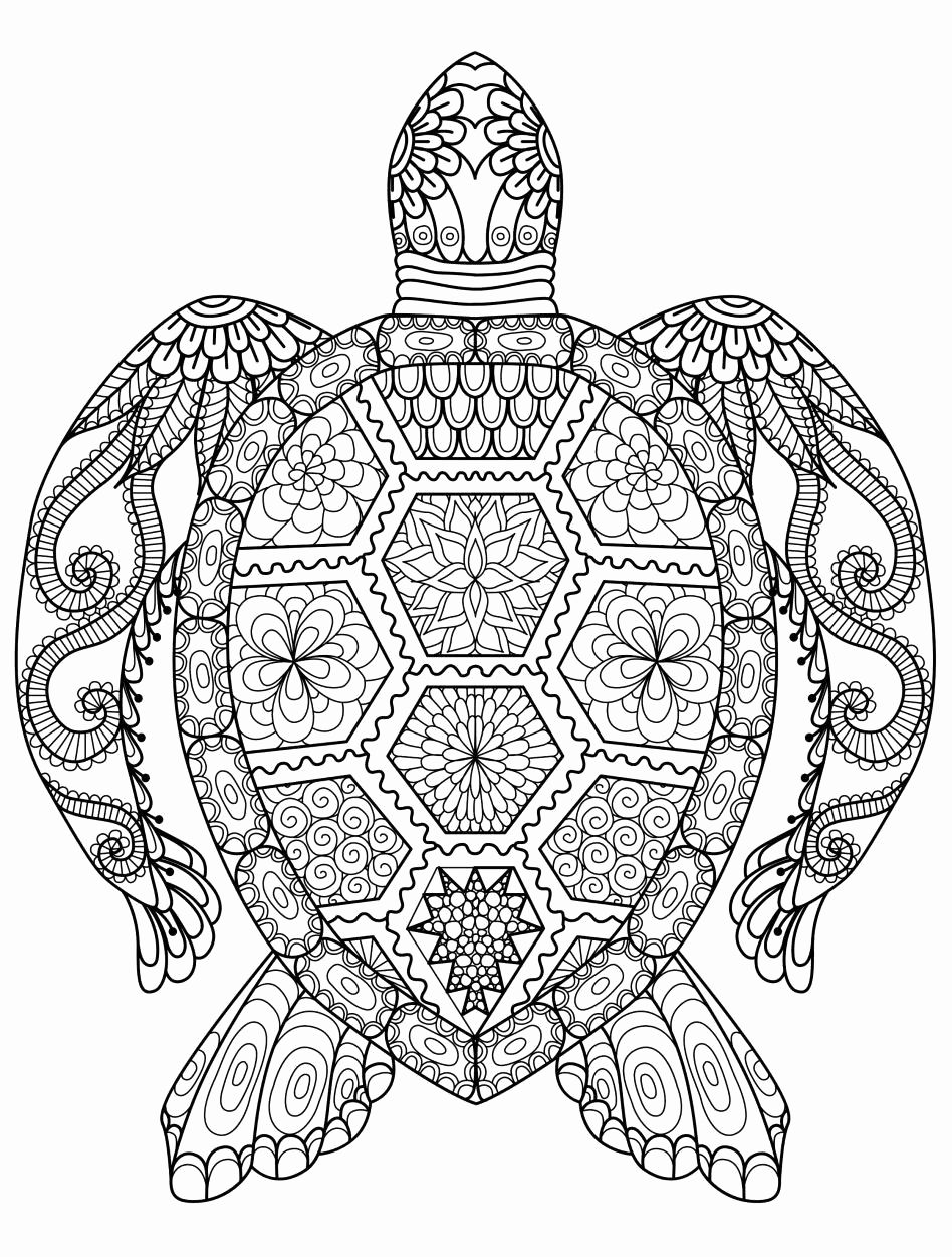 Cute And Hard Coloring Pages For Kids Turtle Coloring Pages Colouring Sheets For Adults Mandala Coloring Pages
