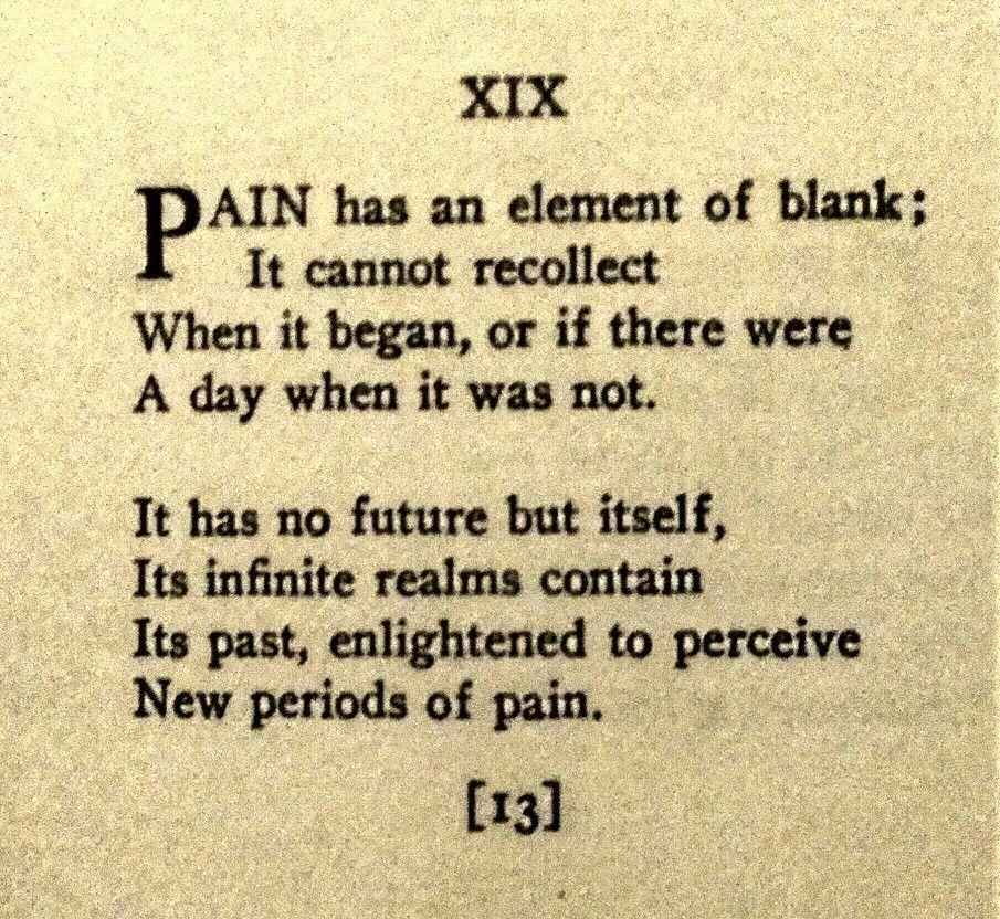 emily dickinson pain